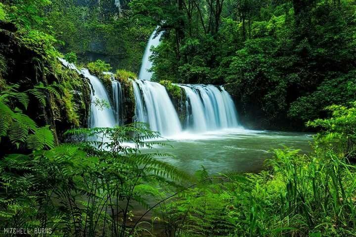 Nandroya Falls, Wooroonooran NP, QLD