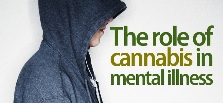 The role of #cannabis in #mental #illness It's My Health
