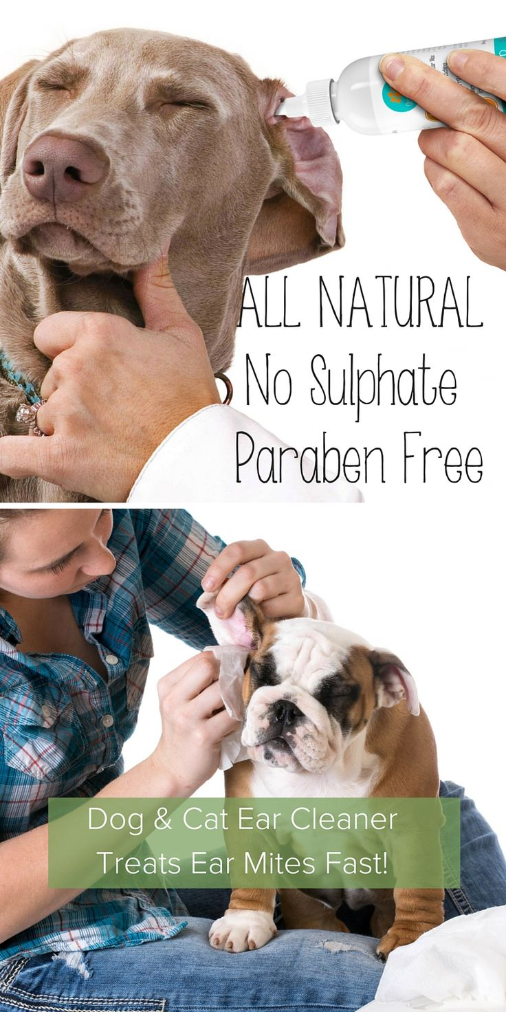Allnatural dog and cat ear cleaner keep your dogs ears