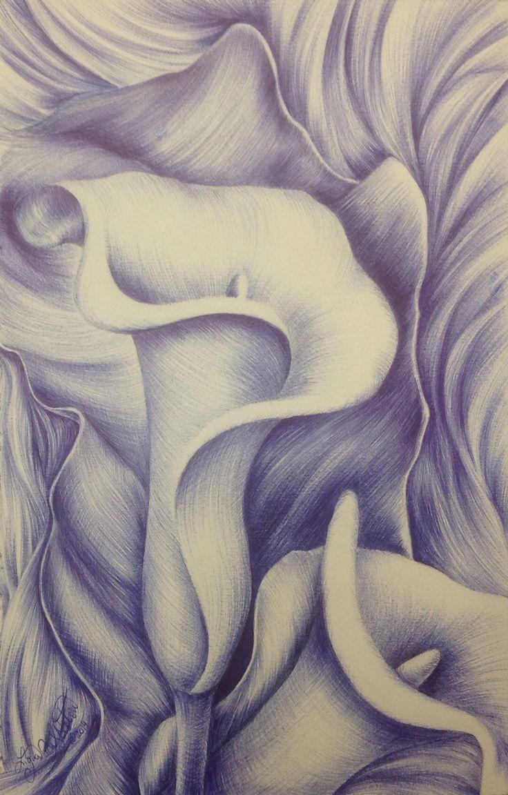 """Calla Lillies"" by Ligia M. S. Ciotau. (ball point pen on paper - 16cm x 25cm)"