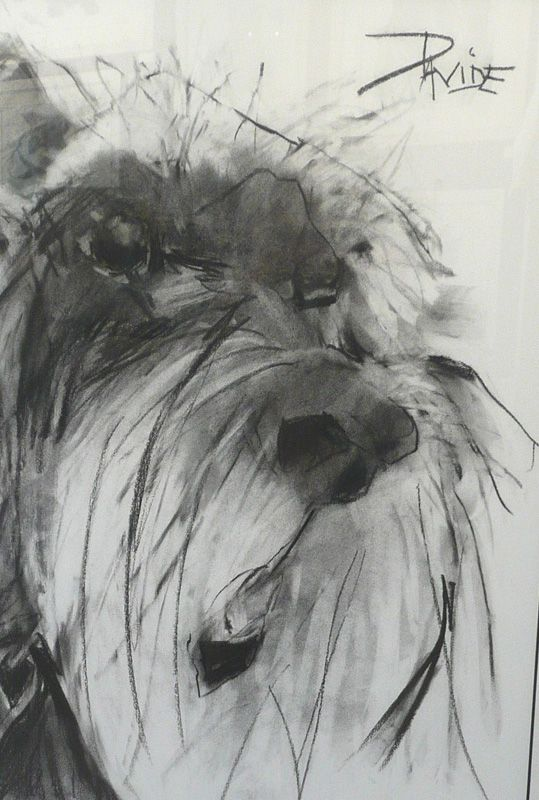17 Best Images About Valerie Davide On Pinterest | Dog Drawings Jack Ou0026#39;connell And Dogs