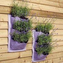 Verti-Plant Plantenzak van Burgon and Ball. Creëer eenvoudig een verticale tuin door deze zakken aan een schutting of aan een muur te bevestigen. Verticale tuin, groene muur, eetbare wand, plantentoren.