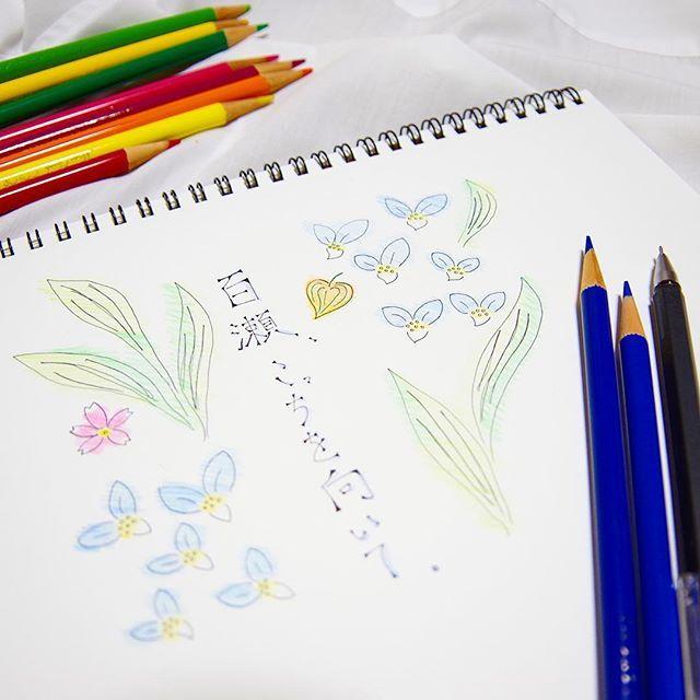 【momosan_k】さんのInstagramをピンしています。 《光の撮り方が美しくて、見惚れてしまう映画。人の想いを言葉にするのはツユクサ、ホオズキ、サクラ、色とりどりの花たち。題名もすごく好きだな💭切ないけれど、なぜか暗い影が残らない余韻。原作も読んでみよう。  #映画 #百瀬こっちを向いて #中田永一 #色鉛筆 #画用紙 #露草 #鬼灯 #桜 #花言葉 #カラフル #colorful #movie #イラスト #絵 #ボールペン #無印良品 #tombo #24色 #colorpencil #一眼レフ #pentax #pentaxk70 #写真好きな人と繋がりたい #ファインダー越しの私の世界 #カメラ女子 #映画好きな人と繋がりたい #映画鑑賞》
