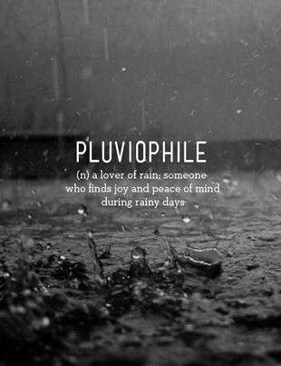 Pluviophile | a lover of rain. someone who finds joy and peace of mind during rainy days.