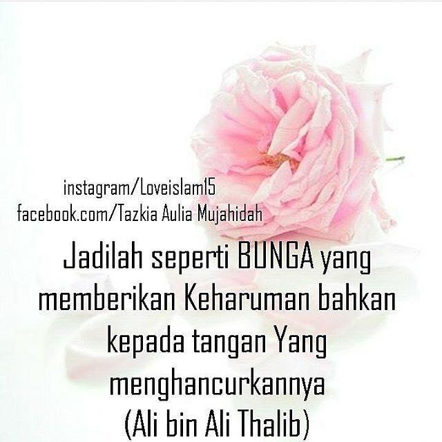 """2,070 Likes, 15 Comments - Majelis Tausiyah Cinta  (@tausiyahcinta_) on Instagram: """"Diumpamakan seperti bunga karena dirimu begitu istimewah. Maka jangan sampai banyak yang menikmati…"""""""