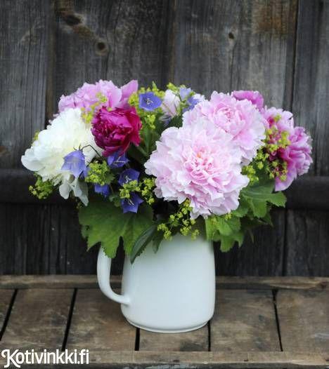 Pionit hurmaavat niin romanttisissa kuin itämaishenkisissä puutarhoissa. Lue, vinkit pionin istutukseen ja hoitoon!