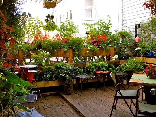 Small Roof Garden 22 best images about garden/patio on pinterest | gardens, decks
