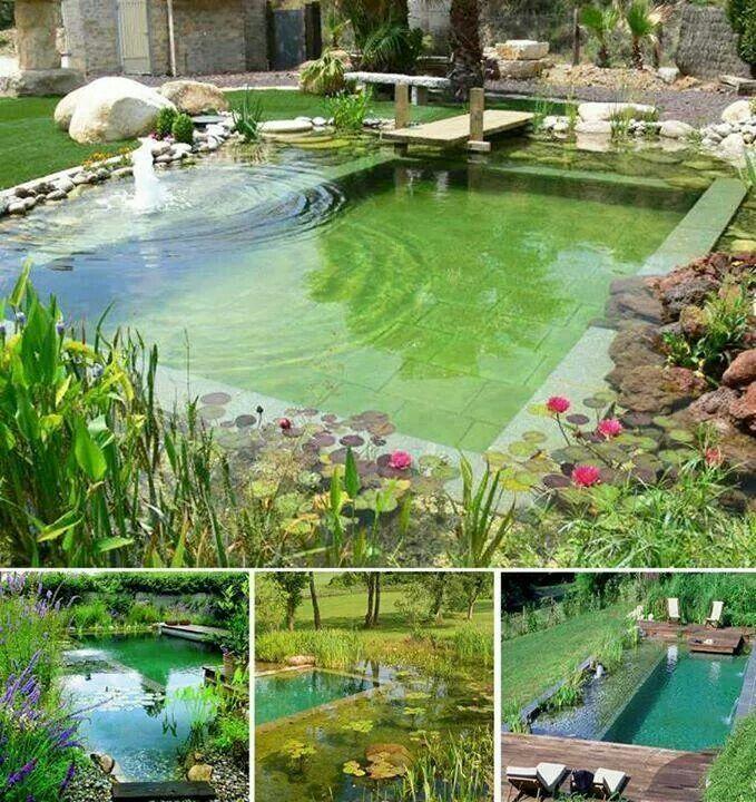 Calming backyard idea
