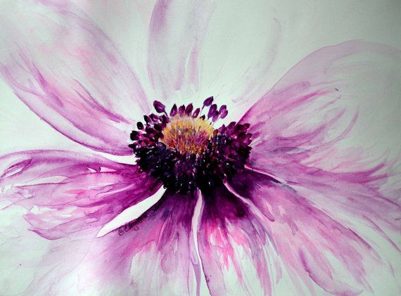 Anemone flower art  purple pink sweet blossom  by CheyAnneSexton
