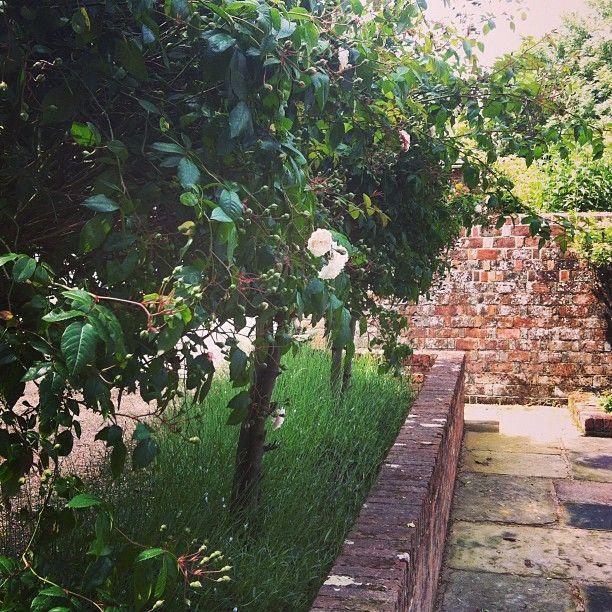 2 Likes, 0 Comments - Jo Thompson | Landscape Design ...