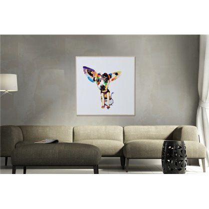 obraz chihuahua 50x50