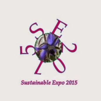 Sustainable Expo 2015 logo - Google+