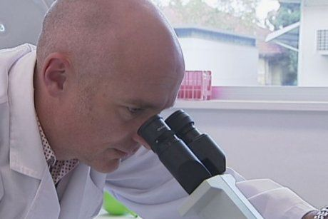 Asbestos-related cancer treatment breakthrough leaves Australian researchers optimistic – ABC News (Australian Broadcasting Corporation) #is #there #a #cure #for #mesothelioma http://maine.remmont.com/asbestos-related-cancer-treatment-breakthrough-leaves-australian-researchers-optimistic-abc-news-australian-broadcasting-corporation-is-there-a-cure-for-mesothelioma/  # Asbestos-related cancer treatment breakthrough leaves Australian researchers optimistic By The National Reporting Team's…