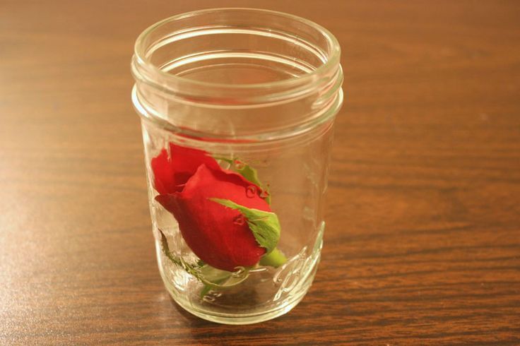 drying roses with silica gel