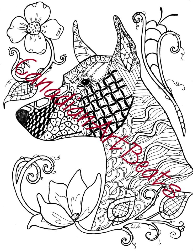 17 best images about adult coloring pages on pinterest for Doberman coloring pages