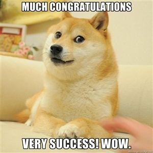 Congratulations funny dog - photo#41