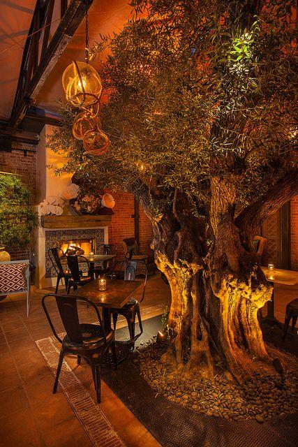 Herringbone restaurant featuring photo by ron neal la jolla ca