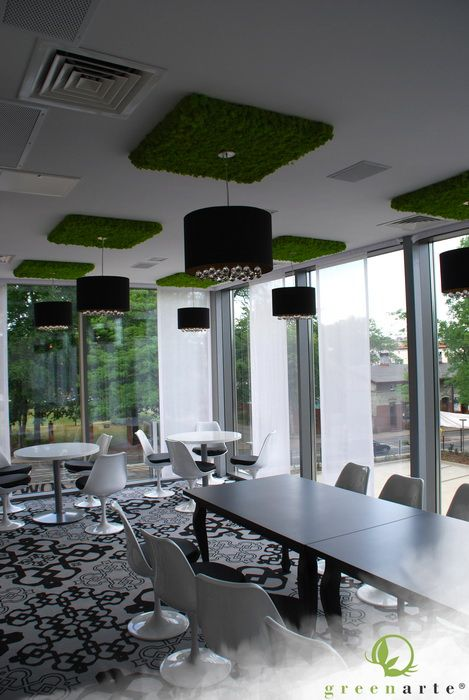 Hotel Gorczowski w Chorzowie   Zielone ściany Greenarte