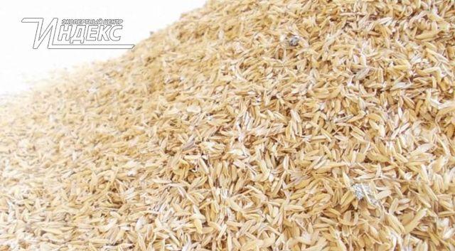 Технология производства стройматериалов из рисовой шелухи
