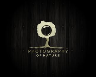 This is kinda stark, but it really appeals to me. Like the shape of the tree and the wood background with the roots spreading. Really cool logo I think. I am drawn to 2 images (or more) in one focal image