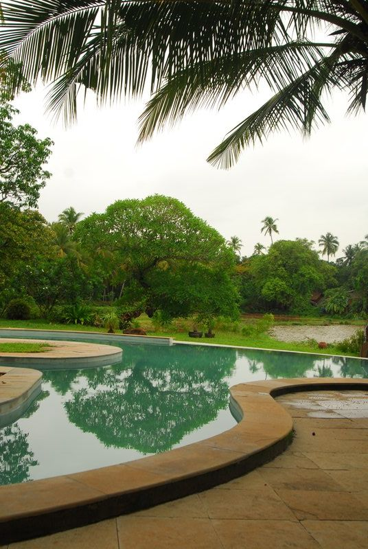 One of my favourite places to stay in Goa. Dogs, cats, a pony and a donkey - how can it not be fun?!   Olaulimgoa.com