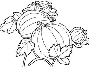 çocuklar için ücretsiz yazdırılabilir Karikatür Pumpkins boyama resim