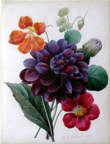 Bouquet of mixed flowers: Pierre Joseph Redouté    wasbella102: