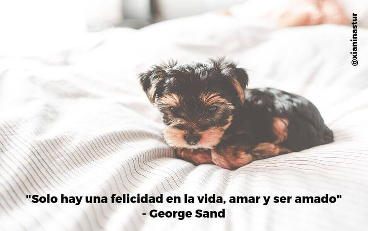 """""""Solo hay una felicidad en la vida, amar y ser amado"""". – George Sand #FraseDelDía"""