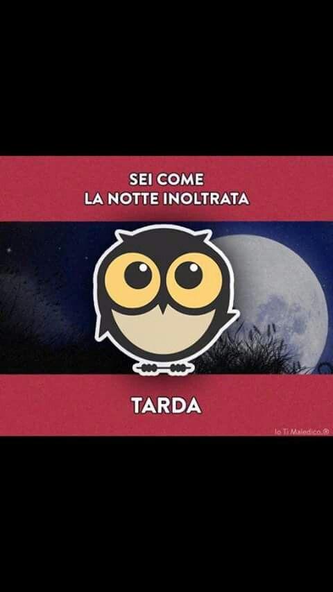 Sei TARDA!