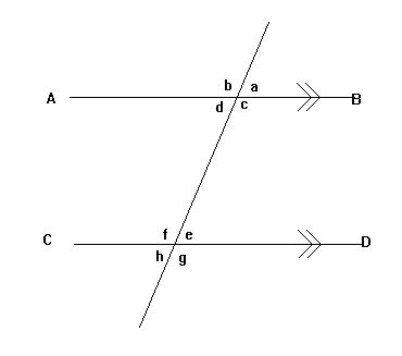 Essay on lines and angles geometry