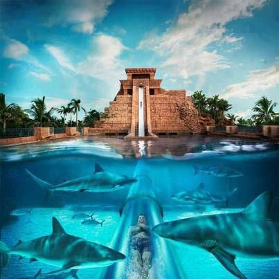 Water Ride At The Atlantis Hotel Located On Man Made Palm Island In