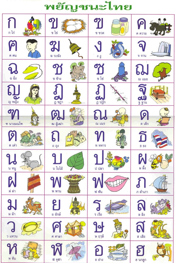 Learn the language and history of my heritage as well as teach my children.  Thai language poster. How children learn Thai.