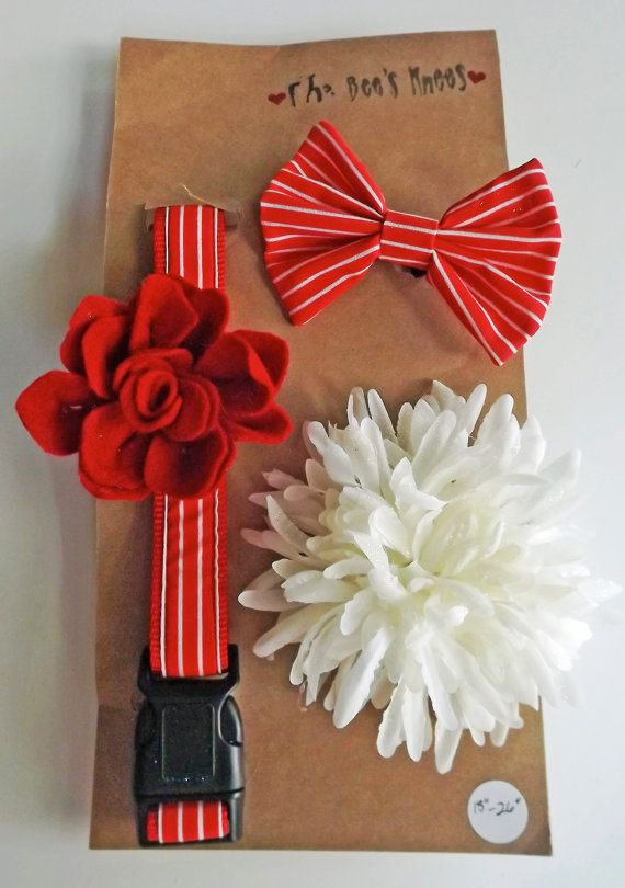 """Fancy Christmas Dog/Cat Collar Set with 3 Attachments,18""""26"""""""