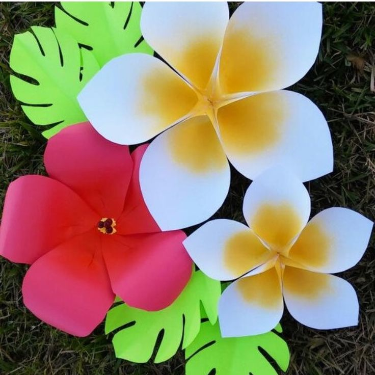 Hawaiian paper flowers. DIY giant flowers.