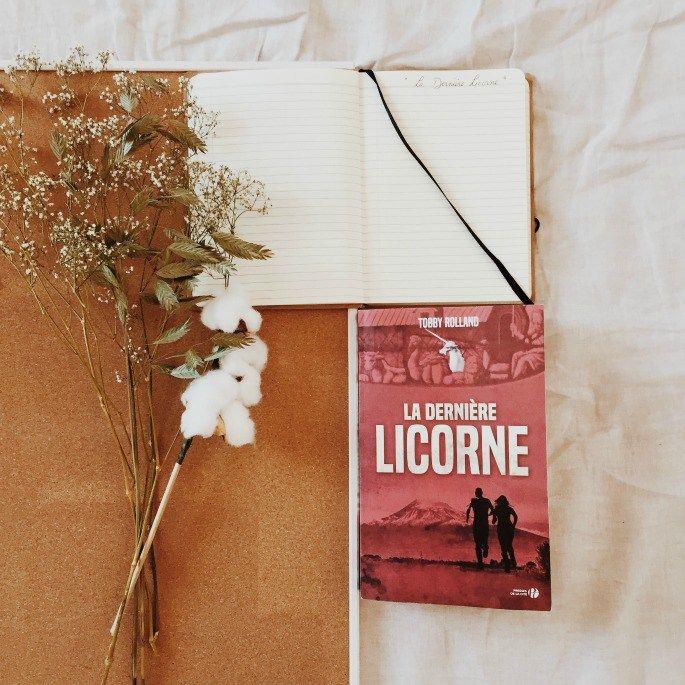 Le thriller ésotérique de Tobby Rolland : La dernière licorne. Par abracadabooks