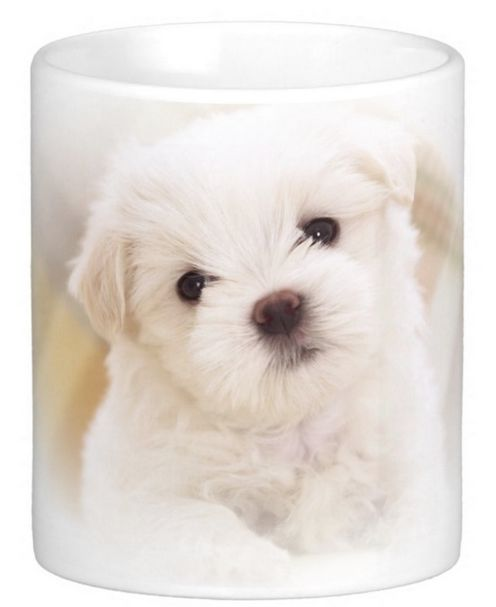 Doesn't this little fluffy puppy warm your heart! What a charming gift for a puppy lover. Something uplifting to look at as you wake up in the morning.