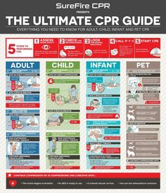 Infographic: Learn How To Perform CPR With This Ultimate Guide - http://DesignTAXI.com