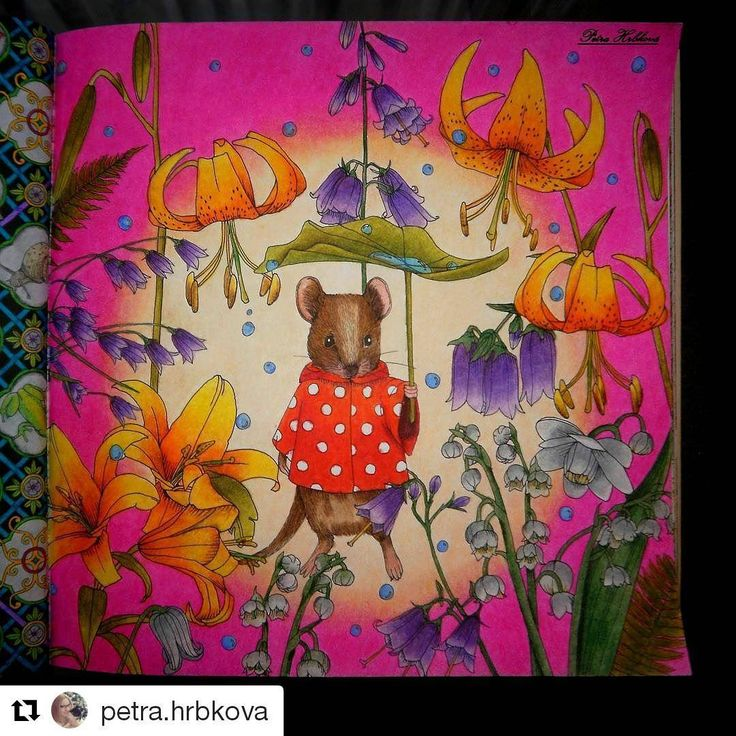 Repost Petrahrbkova With Repostapp Rhapsodyintheforest Menuetdebonheur Egusakanoko Kanokoegusacoloringbookarttherapie Colour Colouring