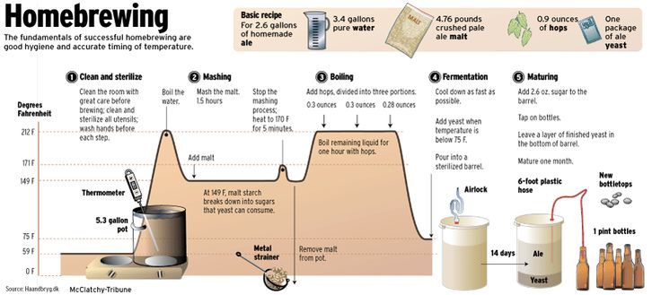 home brew infographic - Google Search