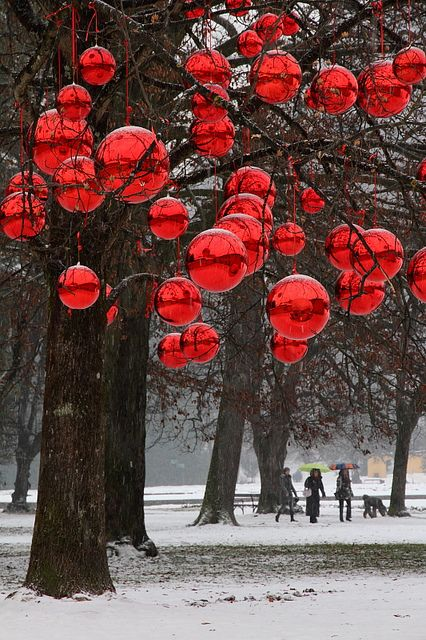 Red ornaments in tree.