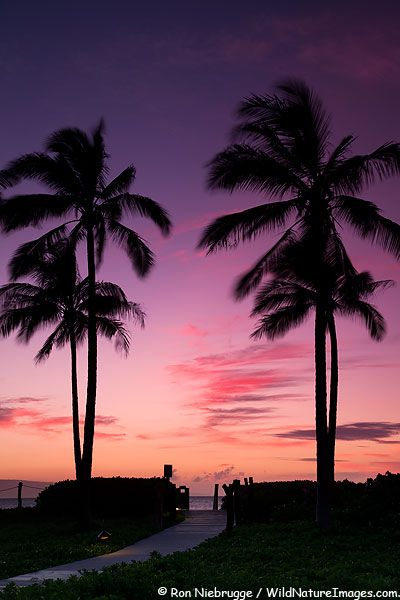 ✯ Sunset on the beach, Lahaina;  our condo was on the beach, and the sunset really does look like this.