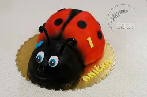 Dort beruška,  ladybug cake