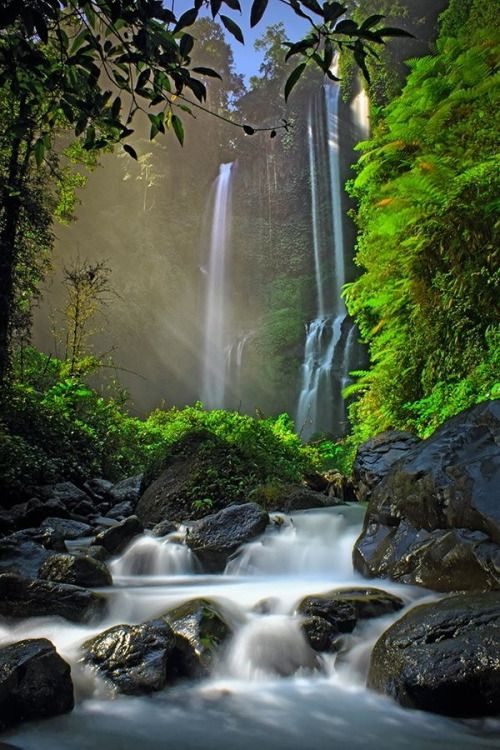 Outstanding Photography of Sekumpul waterfall Buleleng...