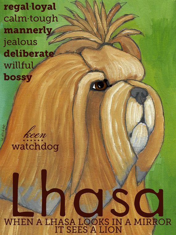 Lhasa Apso No 1  Art Print 85x11 by ursuladodge on Etsy