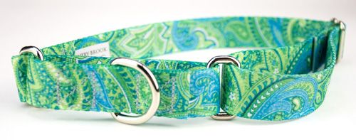 Your custom made Martingale dog collar should look just like ours.