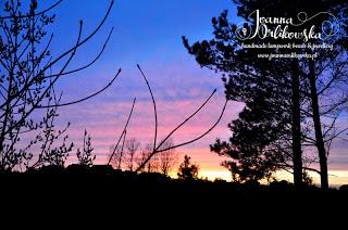 Sunset at Kashubia by Joanna Orlikowska