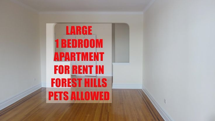 Best 25 Queens Apartments For Rent Ideas On Pinterest