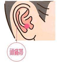 頭痛に効く耳つぼ(耳ツボ)