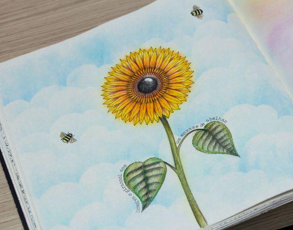 O Livro Jardim Secreto Nas Unhas E Minhas Pinturas Secret Garden Coloring BookAdult
