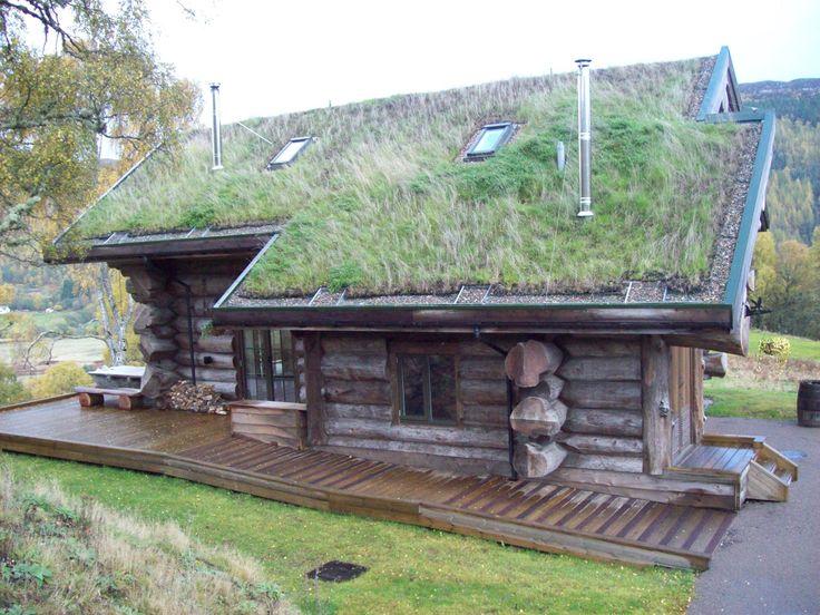 FAKRO dakramen zijn zeer energie-efficiënt en perfect voor groene daken in duurzame huizen.